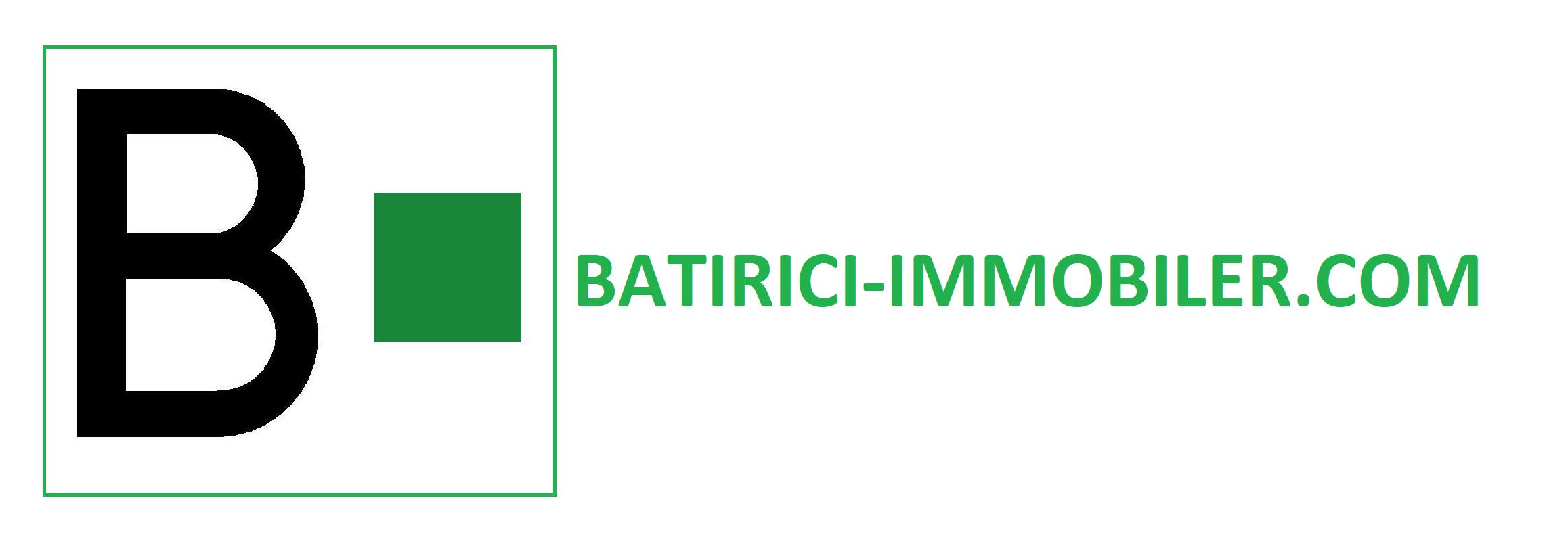 logo HD batiric immobilier logo