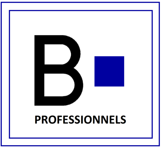logo-HD-batiric-travaux-Pro-2