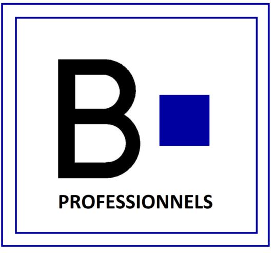 logo-HD-batiric-travaux-Pro